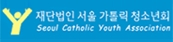 ��ܹ��� ���� ī�縯 û�ҳ�ȸ Seoul Cotholic Youth Association